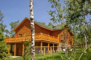 Grizzly Loftbed Cabin
